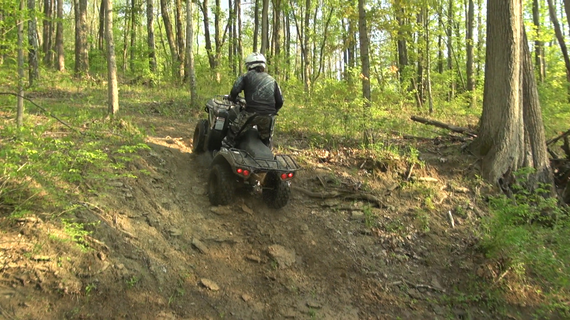 2015-kawasaki_brute_force_300_test_creek_bank_climb_2