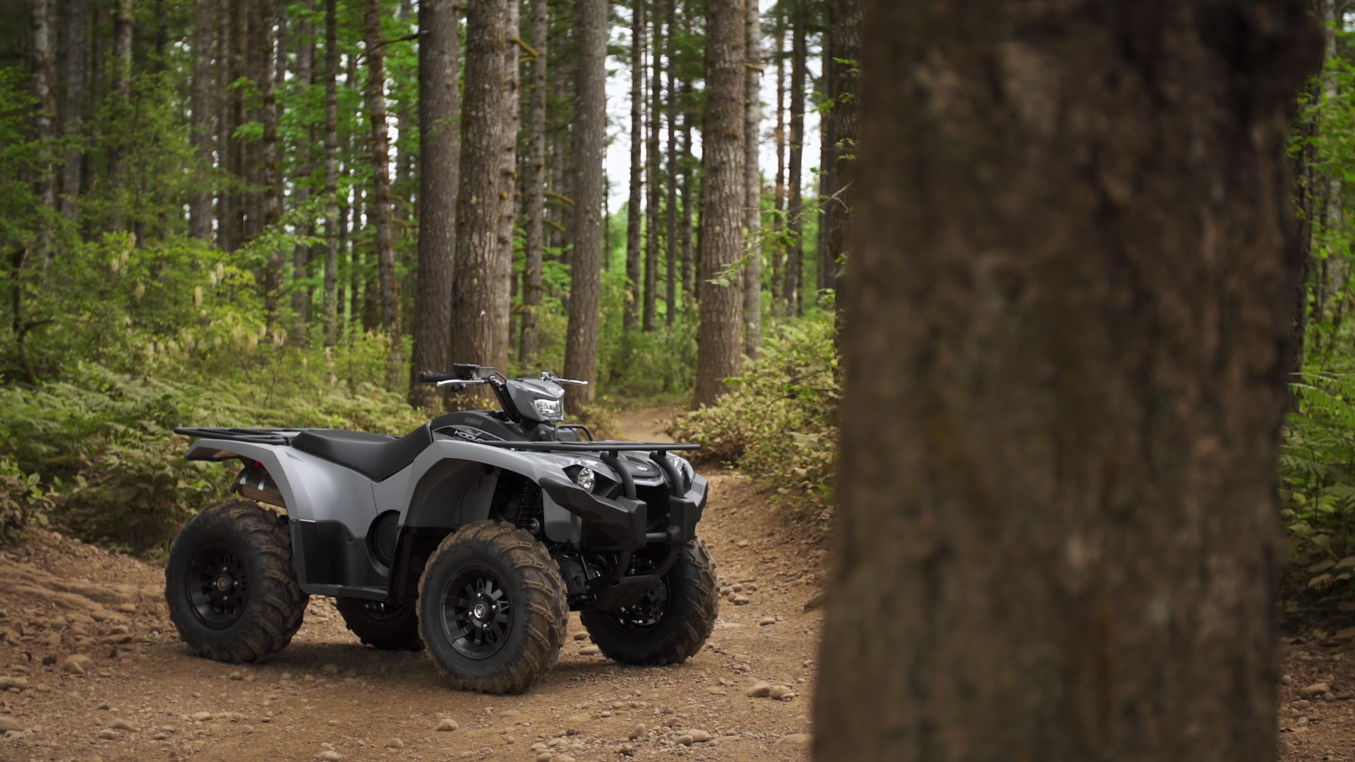 2018 yamaha kodiak 450 test review with video for 2017 yamaha grizzly review