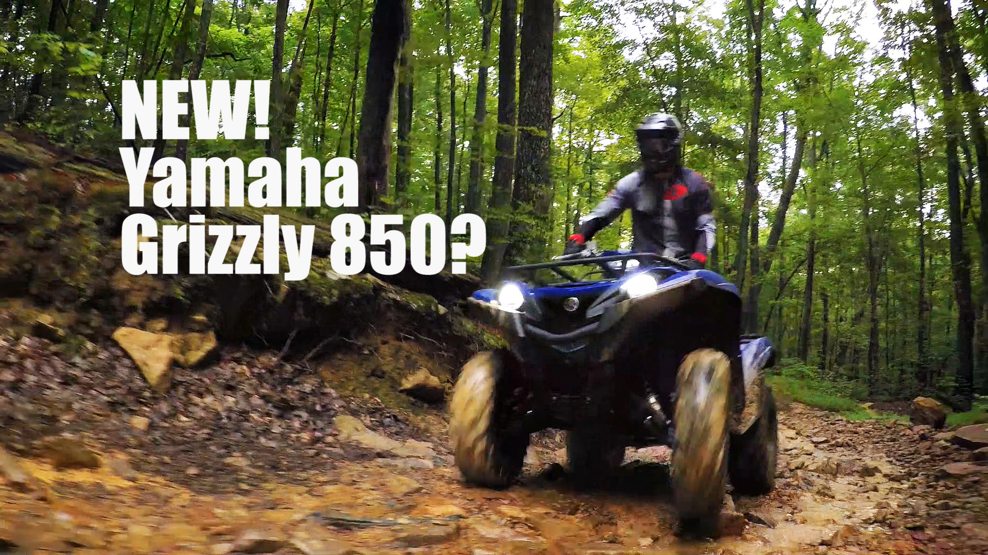 New Yamaha Grizzly 850